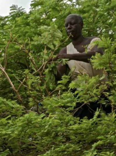 Burkina Faso: putting a #hiddencrisis on the map