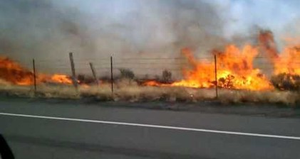 Wildfires rage near Reno, Nevada