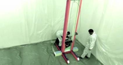 Berlin artists risk prison for bizarre lamb experiment