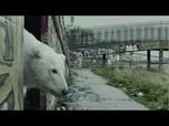VIDEO: Lonely polar bear roams London in Greenpeace video