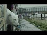 VIDEO: Lonely polar bear roams London in Greenpeace video